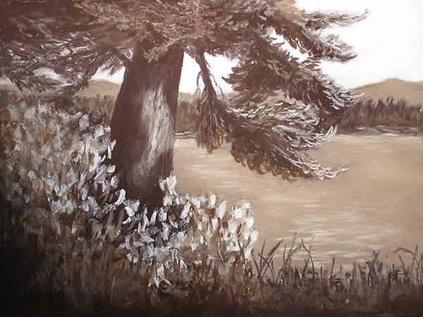 Cliff Tree Study