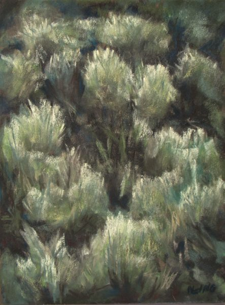 Scent of Sage - Soft pastel painting by Nancy Ging, Artist